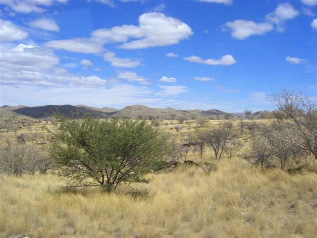 Savanne-Buschlandschaft Namibia Afrika 2006 - 2007
