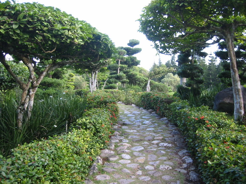 Botanischer_Garten_Santo_Domingo