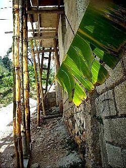 bambusschalung