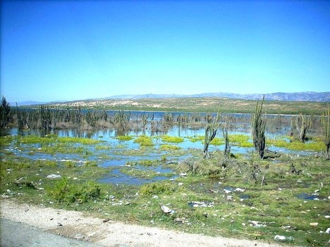 Dominikanische Republik: Azüey-See überflutet erneut Geschäfte ...