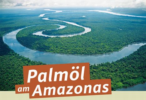 palmoel-amazonas