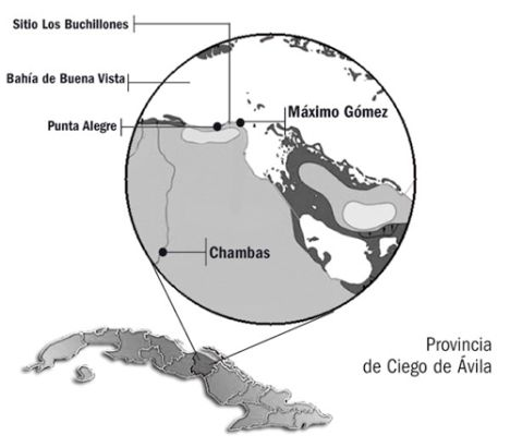 archaeological-area-buchillones