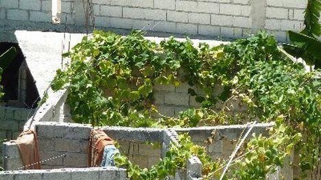 Provisorium-ohne-Dach