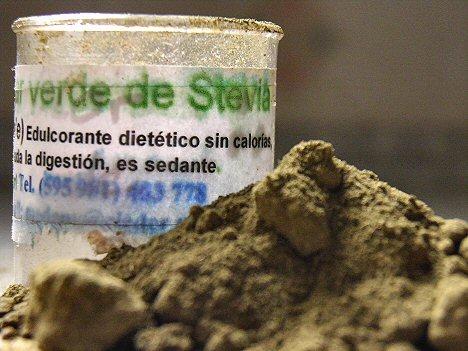 Stevia Süßstoff - Zuckerersatz aus Paraguay