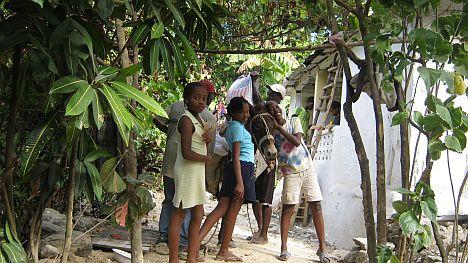 haitikids