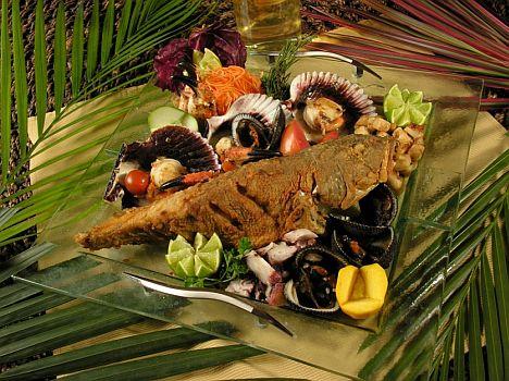 Ecuador_Camotillo Fisch
