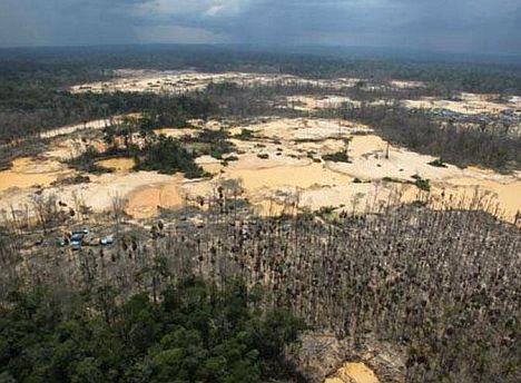 Amazonaszerstörung