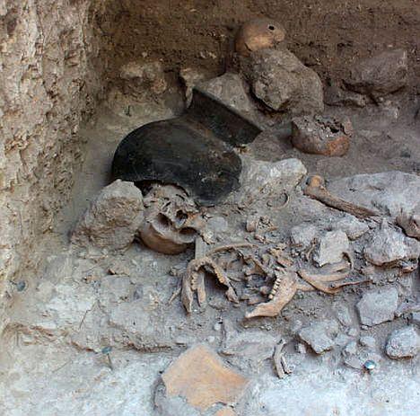 Uxul-Skelett-Teile während der Ausgrabung