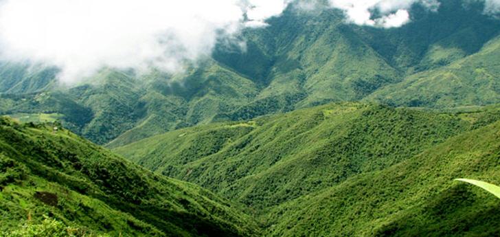nebelwald-ecuador