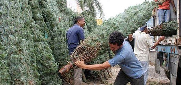 weihnachten-venezuela