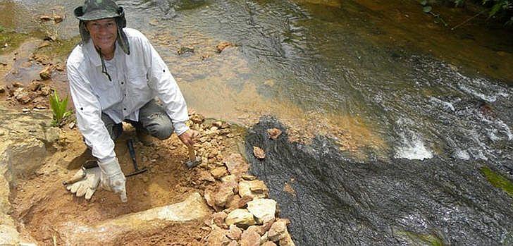 fosil-brasilien