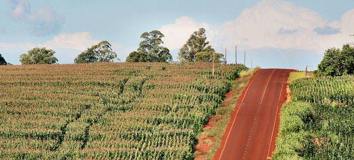 landwirtschaft-lateinamerika