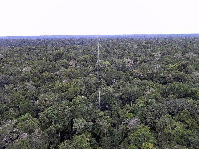 messturm-amazonas-brasilien
