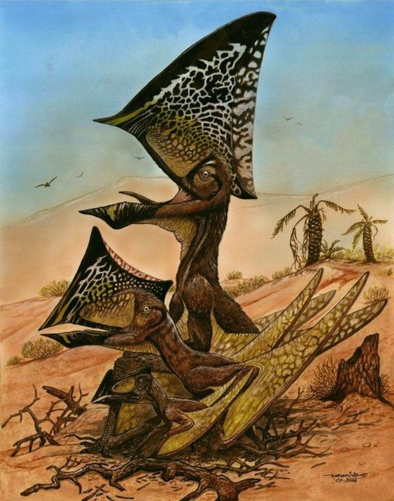 pterosaur-reptiles