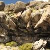 Peru: Höchste Siedlungsplätze eiszeitlicher Menschen in den  Anden entdeckt