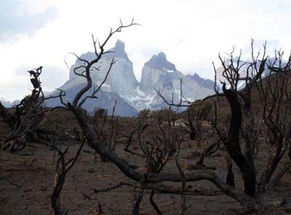 verheerender-brand-nationalpark