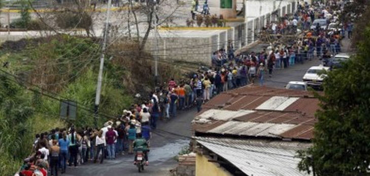 schlange-venezuela