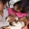 Fehlende Milch in Venezuela: Fälle von Unterernährung bei Kindern steigend