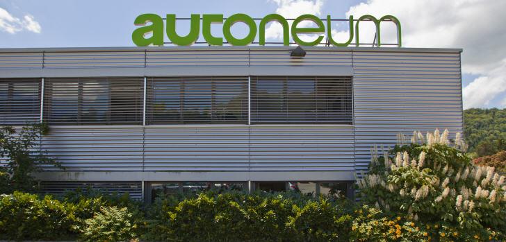 autoneum