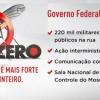 Zika-Virus in Lateinamerika: Brasilien bestätigt drittes Todesopfer