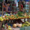 Venezuela: Chaos und Unfähigkeit verhindern Produktion von Lebensmitteln