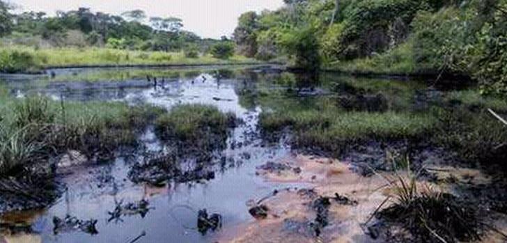 Nach Angaben der Nationalversammlung sind bis zu 40. 000 Barell Öl ausgelaufen