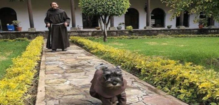 Besucher haben den rauhaarigen Haushund bereits mehrfach fotografiert, die Bilder in sozialen Netzwerken Tausende Male geteilt