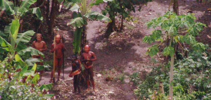 Diese Luftaufnahme von 2011 zeigt ein unkontaktiertes Amazonas-Volk in Brasilien nahe der peruanischen Grenze