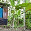 Ökologische Trockentoiletten im peruanischen Amazonasgebiet