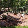 Dammbruch-Gefahr in Brasilien: 200 Menschen evakuiert