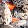 Grüner Grillen: Diese Kohle macht sich bezahlt