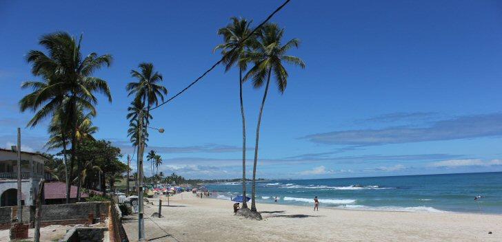 palmen-beach