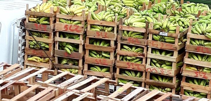 banaen