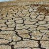 Beständigere Hitze-, Regen- und Trockenperioden weltweit