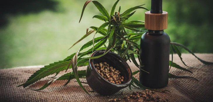 cannabis-oel
