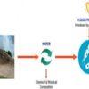 Trinidad: Gefährliche Keime aus dem Schlamm