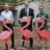 Zoo Dresden: Baufortschritt an der begehbaren Flamingovoliere