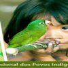 1.120 Indigene Panamazoniens an COVID-19 gestorben
