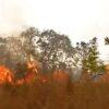 Unkontrollierte Brände in Zentralargentinien